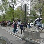 Downtown Manhattan (Downtown)