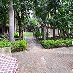 Leopards Lair Resort Photo