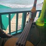 תמונה של Senor Frog's Playa del Carmen