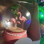 Bild från Magic Flamingo