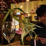 ภาพถ่ายของ Luna Lounge Thong Nai Pan Noi
