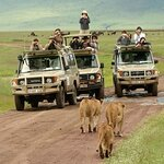 Colours Africa Tours and Safaris