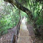 trilha do penhasco - maravilhosa