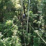 Foto de Santuário de Vida Silvestre Fazenda Vagafogo - RPPN