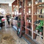 สวนผักโอ้กะจู๋ สาขานิ่มซิตี้เดลี่ Ohkajhu Organic @ Nim city daily