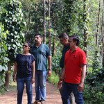 Private Mercara Coorg Coffee and Spice Estate Tour