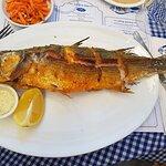 תמונה של Fish Market - שוק דגים