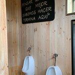 Frases en sus baños