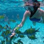 Snorkel, Kayak and Paddleboard Adventure at Santa Maria Beach