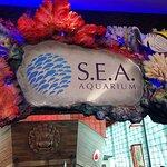 South East Asia (S.E.A.) Aquarium™