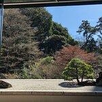 大きな窓から見えるお庭が素敵です。