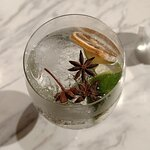 Flavored Gin and Tonic