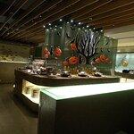 IS Café照片
