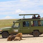 4-Day Private Tour Visiting Serengeti and Ngorongoro Wildlife and Culture tour