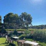 Garden seating and vineyards.