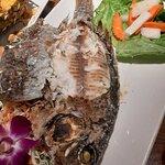 Orange Elephant Thai Restaurant照片