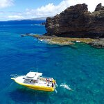 6-Hour Lanai Snorkel & Dolphin Tour from Lahaina