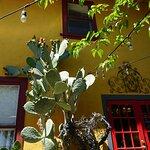 Moscato...gorgeous courtyard...