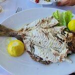Φωτογραφία: Fish & Pasta Kannas