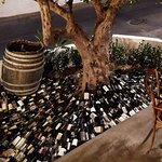 olive tree and wine bottles!