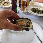 Фотография Koral Restaurant Sarande