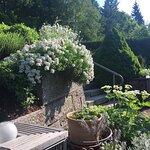 Gartenaufgang