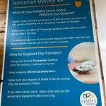 Get Shucked Oyster照片