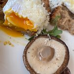 Poached Egg, Portobello Mushroom, Trüffel & Joseph Brot