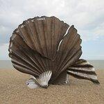 Aldeburgh Beach Scallop