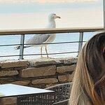 Фотография Bonaca Restaurant & Lounge Bar