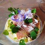 Ørret lagt på en bunn av sommerkål i en smørsaus tilsatt rømme fra Todal meieri, ramsløkolje og