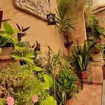 Can Costa Celler Alcudia Foto