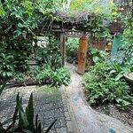 ภาพถ่ายของ Om Garden Cafe