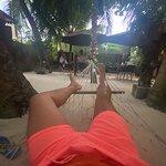 Stingray Beach Inn照片