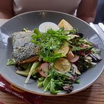 The Oven Baked Salmon salad: the pesto sauce was excellent and adequately coated the beautifully