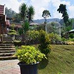 Foto Mbah Djoe Resort