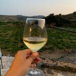 Foto di Agrisola di Pantelleria