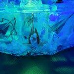 صورة فوتوغرافية لـ ICEBAR