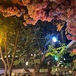 صورة فوتوغرافية لـ Secret Garden Restaurant