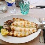 Billede af Pizzeria e Cucina Mediterranea Arco