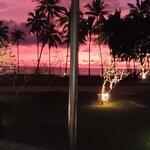 ภาพถ่ายของ โอลีฟ เมดิเตอร์เรเนี่ยน เรสเตอรองท์