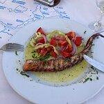 Naoussa Restaurant照片