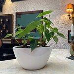 Bilde fra Koukos Rhodian Guesthouse