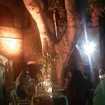 Φωτογραφία: Zebrano Restaurant - Bar