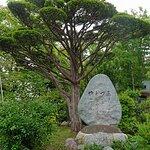 庭園の石碑。