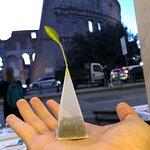 Bilde fra Gran Caffe Rossi Martini