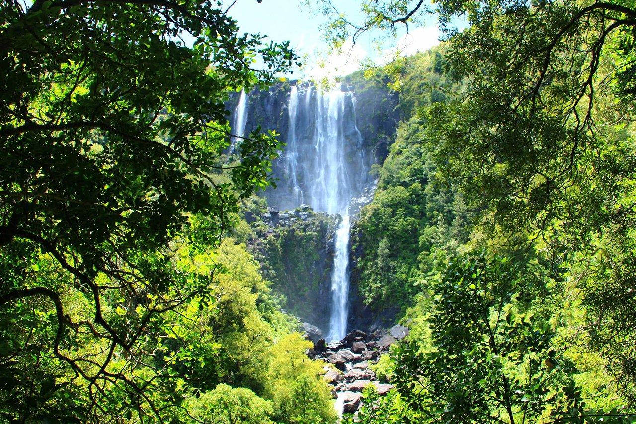 Resultado de imagen de Wairere Falls Track, Te Aroha
