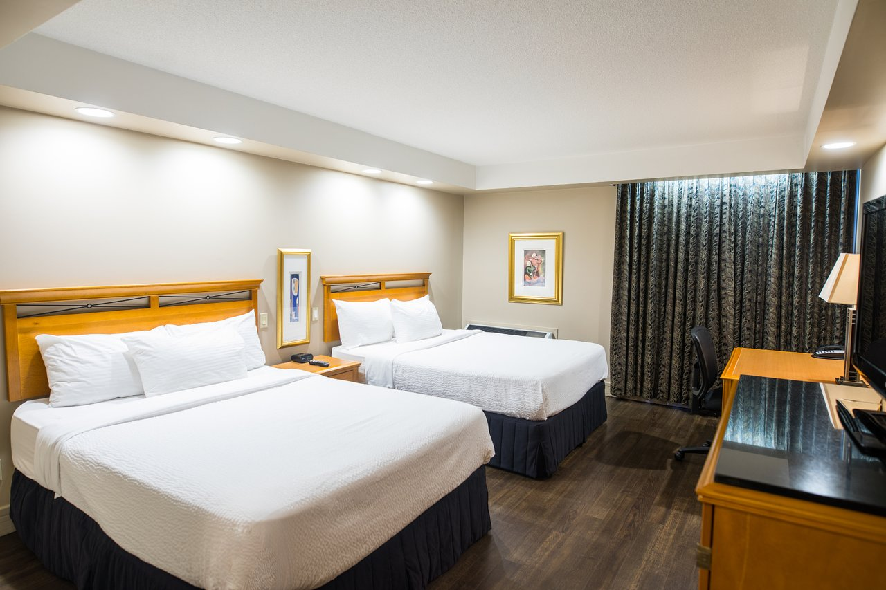 executive royal hotel calgary c 1 1 8 c 111 updated 2019 rh tripadvisor ca