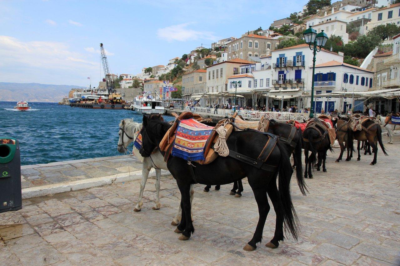 hydra tourism