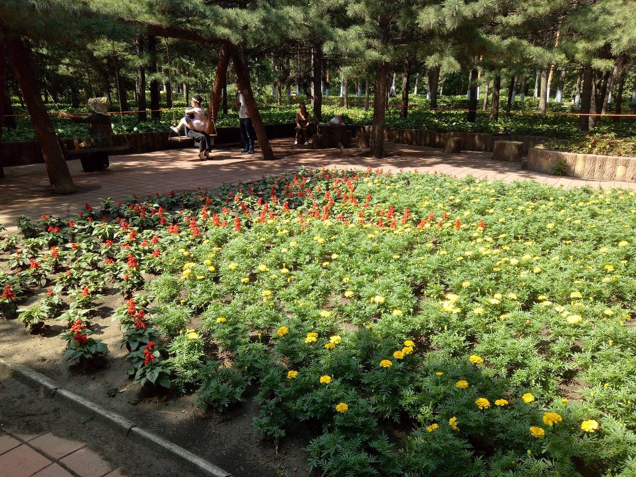 Harbin Forest Botanical Garden Cina Review Tripadvisor